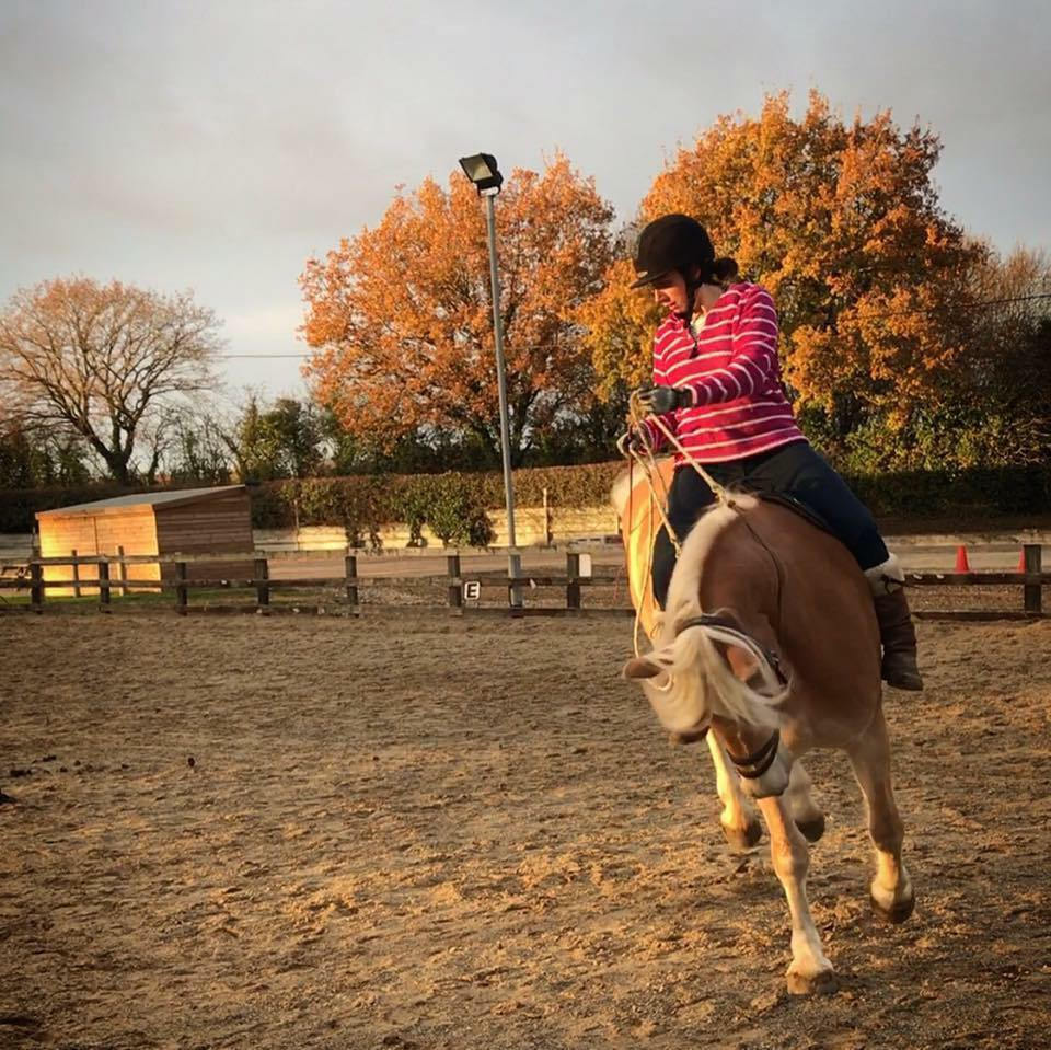 ...some days weren't so easy! Bucking was caused by an ill fitting saddle and undeveloped muscles. Our training includes tack assessments and is ultimately a form of horse/rider biomechanics and straightness training to strengthen and balance your horse, increasing suppleness and full range of movement.