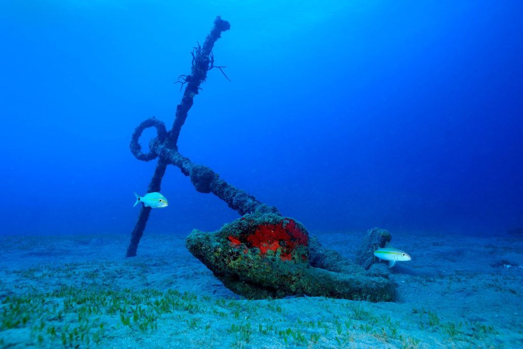 This is one of two anchors at the Double Wreck reef in Statia's Marine National Park. They call the site double wreck because the reef grew on top of the ballast stones created by two ship wrecks, one Dutch and one English. The anchor in the picture is of the English anchor. Photo courtesy of Statia Tourism.