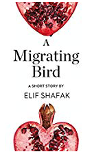 Wayne Powell Law Firm | TED Talk Tuesday from Author Elik Shafak |  A Migrating Bird.png