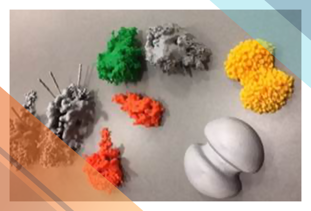 Various 3-D printed models that support hands-on exploration of stellar evolution.