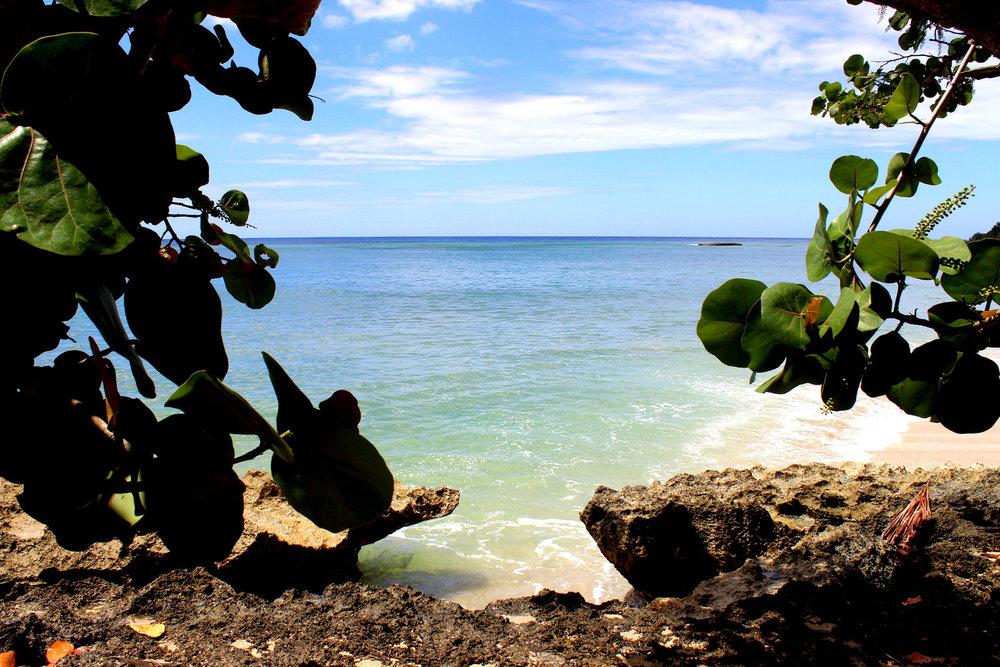 tropics4.jpg