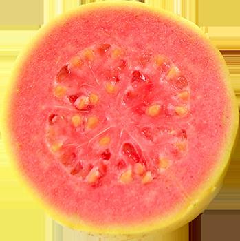 guava_350.png