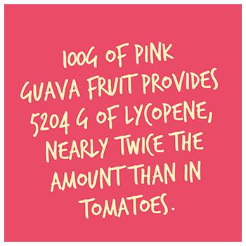 guava_pop1_350.png