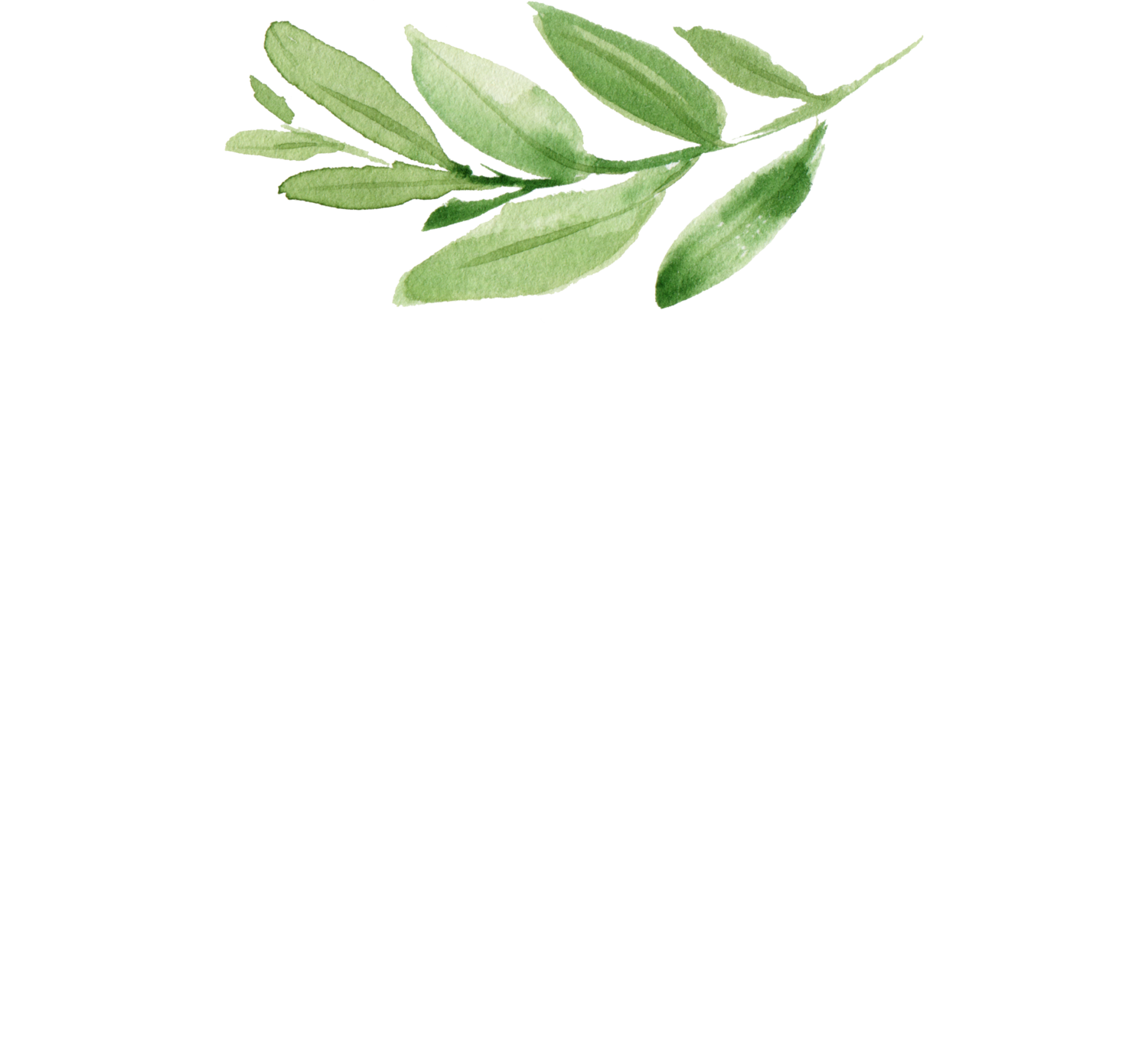 CoCoBella Photography
