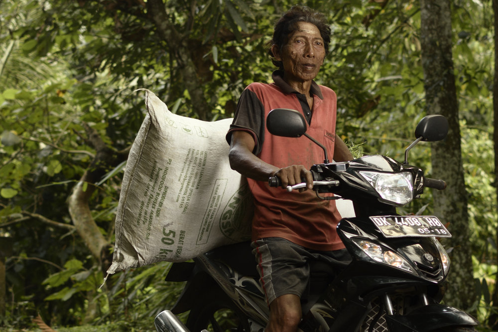 The convenience of technology has helped the farmers in their daily work life, as seen here, the use of motorbikes as a mode of transport has helped getting goods across distances.