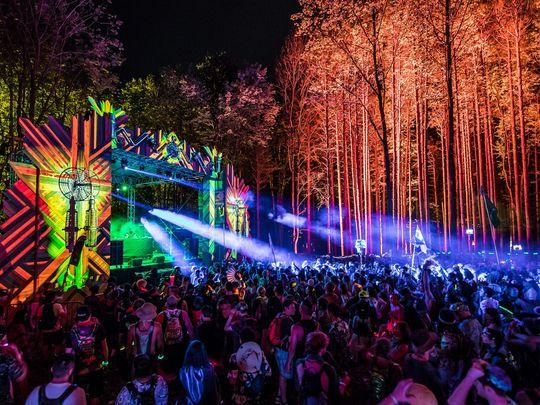 Firefly Music Festival Crowd Woods.jpg