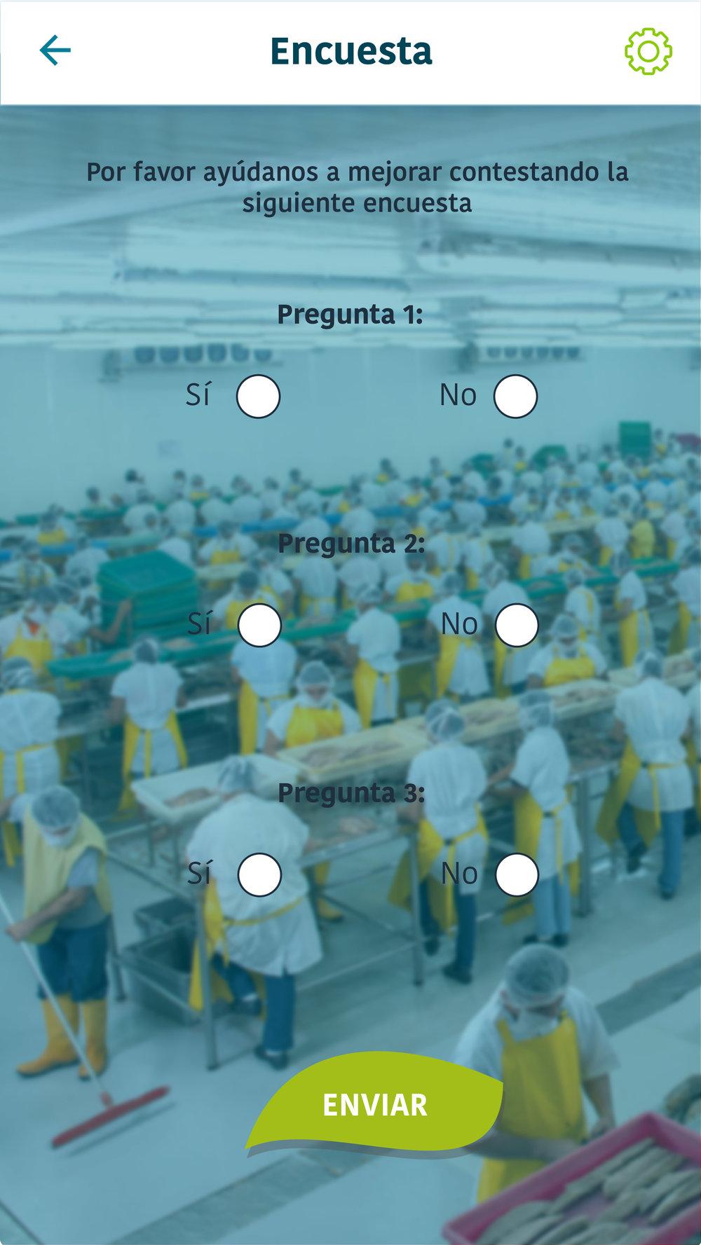 AF SCREENS APP TECONECTA-13.jpg
