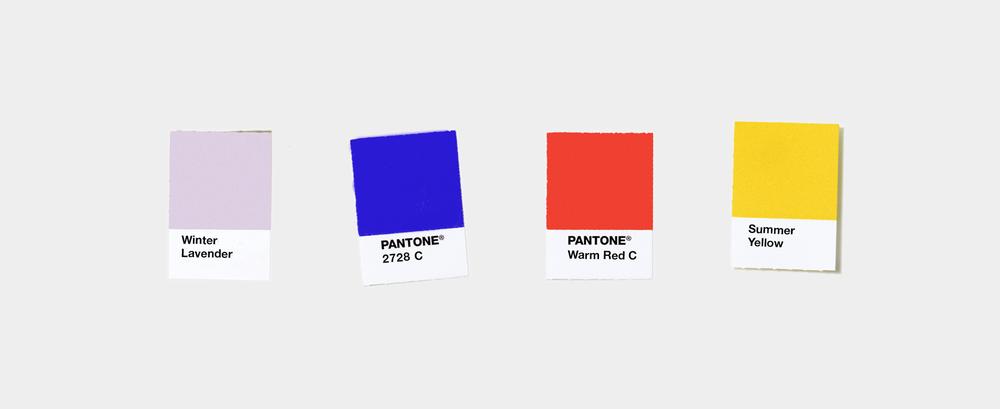 Manhattan Saddlery color palette by Knockout! Studio