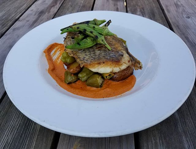 #freshfishfriday reels in  Pan seared North Carolina Black Drum with Appalachian gold potatoes, pickled shishito peppers, romesco, and grilled okra.  #theeddypub #localfood #farmtotable #lovefood #cleaneats #eatlocal #realfood #organic #sustainable #foodislove #freshfood #eathealthy #localfarm #foodporn #nom #knowyourfarmer #saxapahaw #community #villagelife