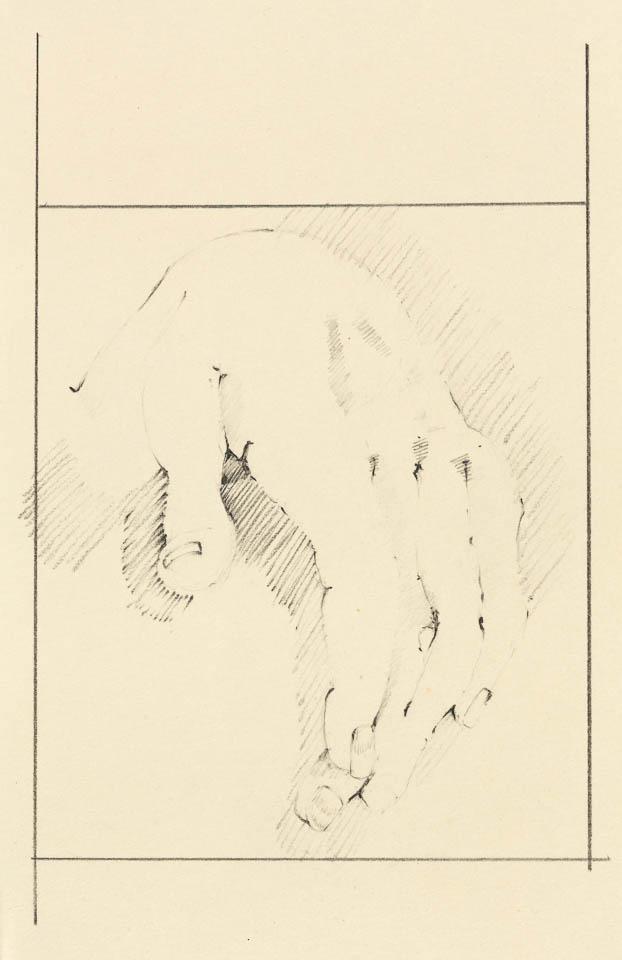 Hand Study, Graphite on Paper