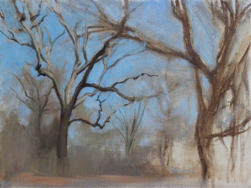 Winter Tree Study, Prospect Park