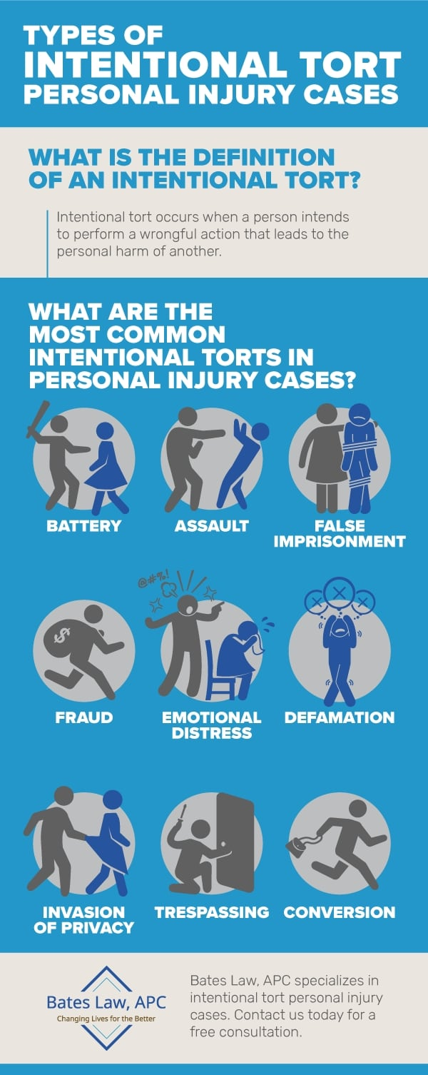 Types of Intentional Tort Personal Injury Cases Infographic