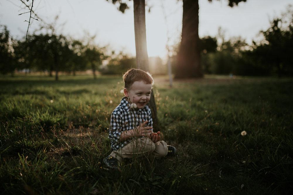 boy apple orchard sunset portland oregon photography toddler family