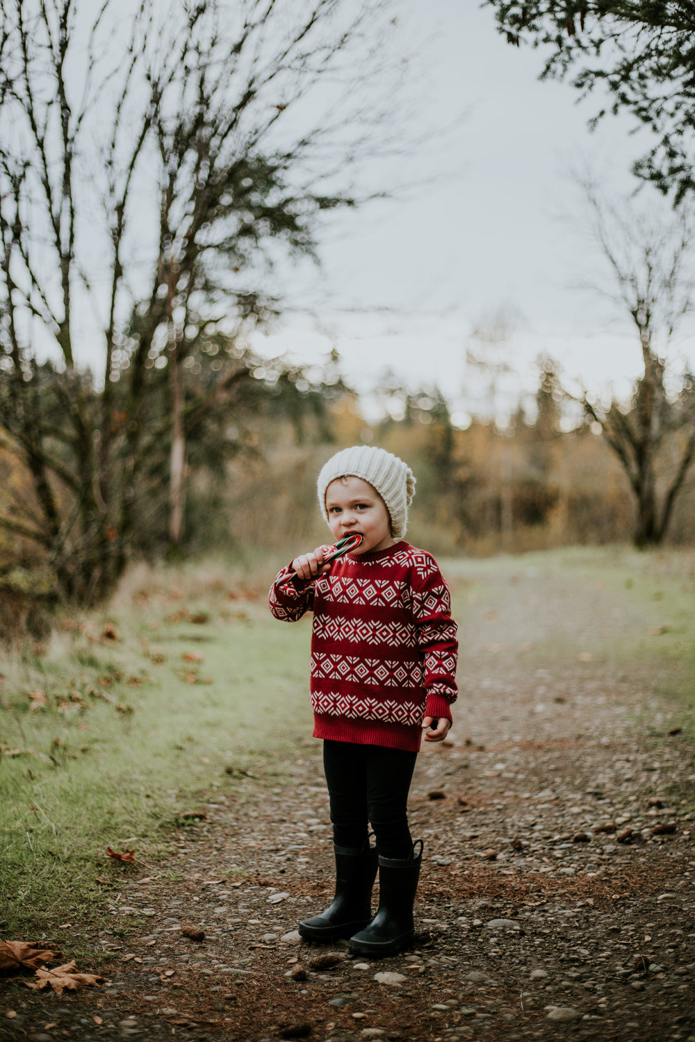 boy christmas holiday portland outdoors family photographer winter