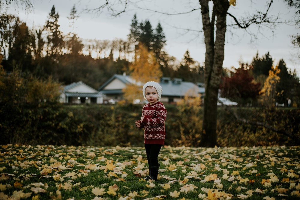 boy christmas holiday portland outdoors family photographer winter fall