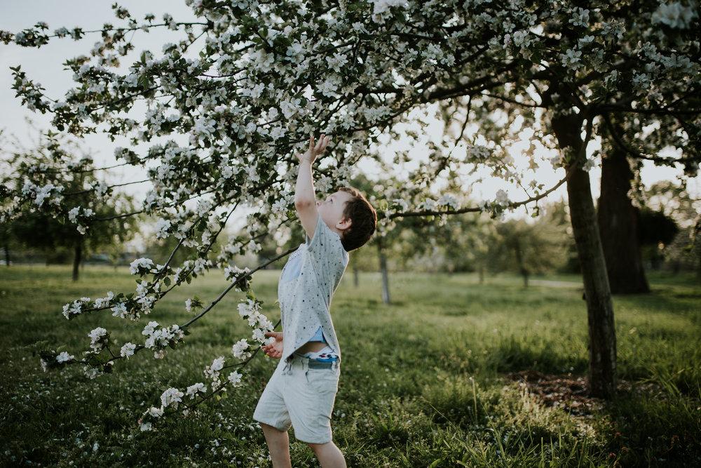 jaxin-cherryblossoms-vancouverwa-jamiecarle-8362.jpg