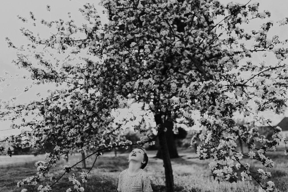 jaxin-cherryblossoms-vancouverwa-jamiecarle-8348.jpg