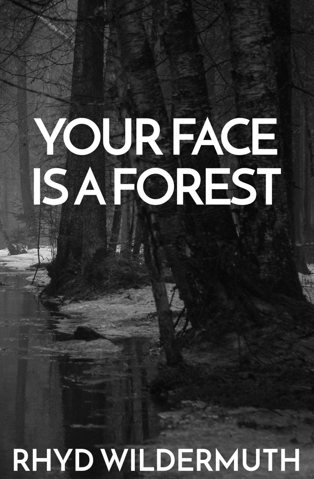 YOUR FACE cover.png
