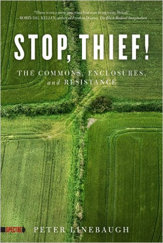 Peter Linebaugh. Stop, Thief! The Commons, Enclosures, and Resistance