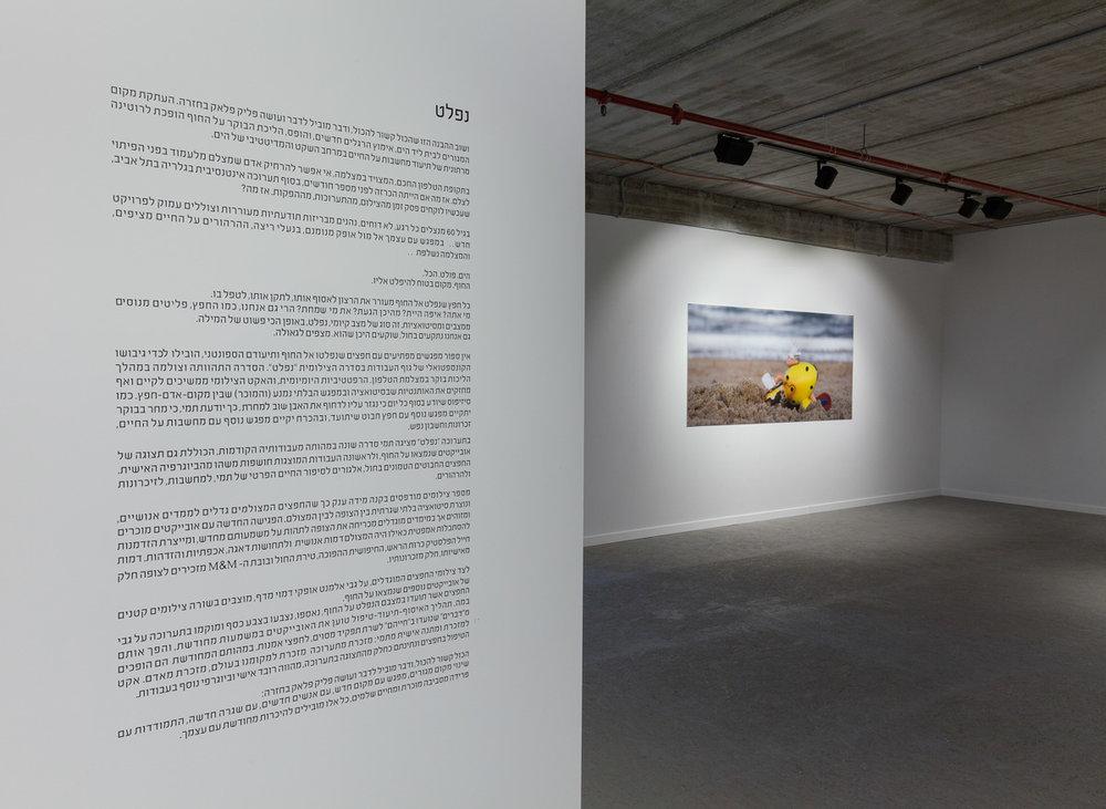 Tami Suez_ ZUZU Gallery_View 28 copy.jpg