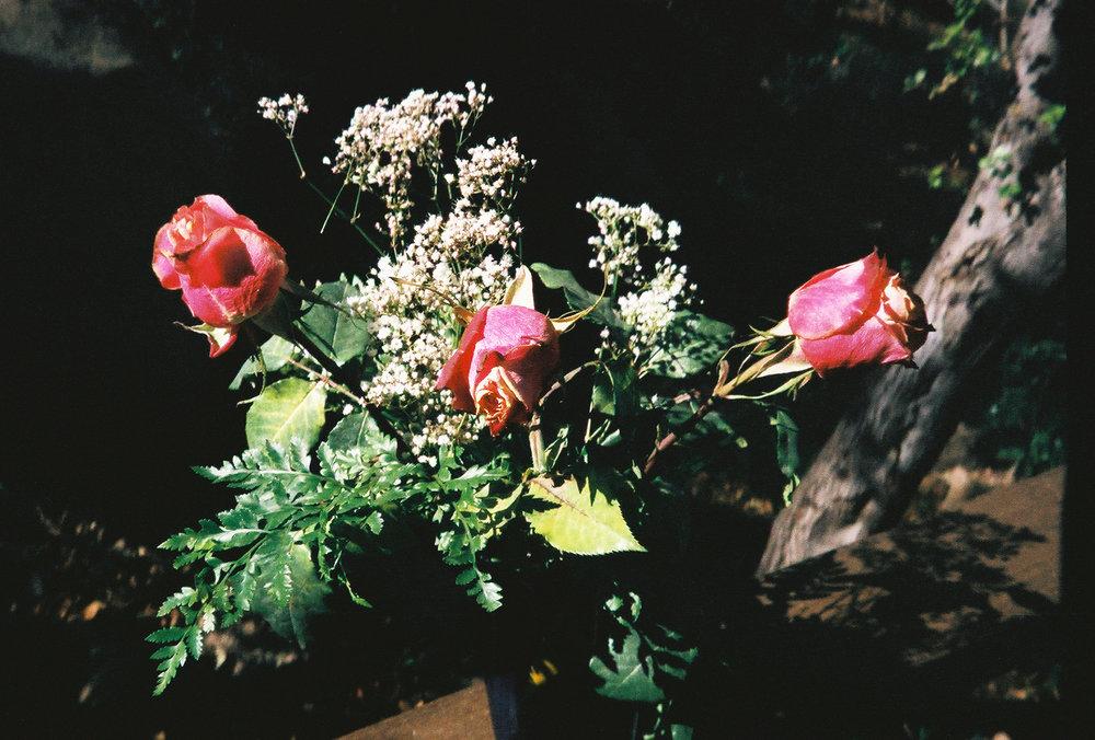 0061959-021.Jpg