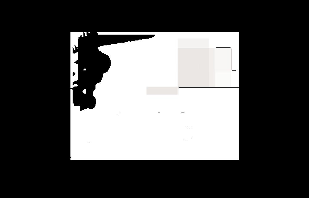 PWCLOGO-05-1024x656.png