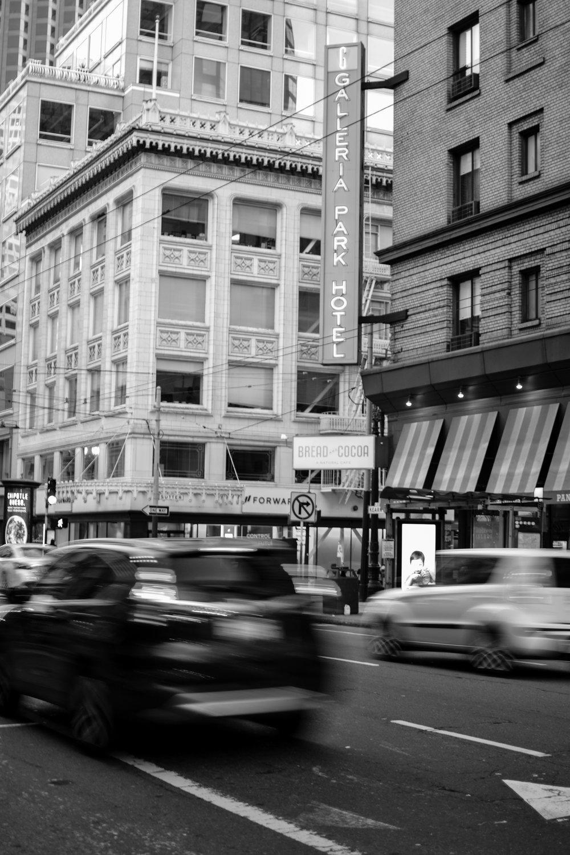 Galleria1-GASPARAFLORA.jpg