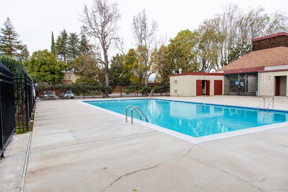 2505 Olivegate Lane Pool.jpeg
