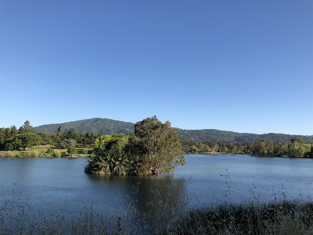 021_Minutes to Los Gatos Creek Trail.jpg