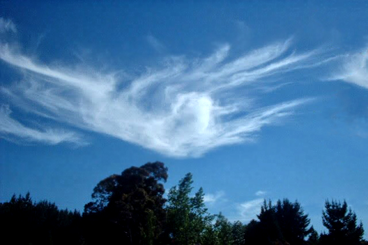 Angel in the Sky in New Zealand 2001 ©  Carmen Froment