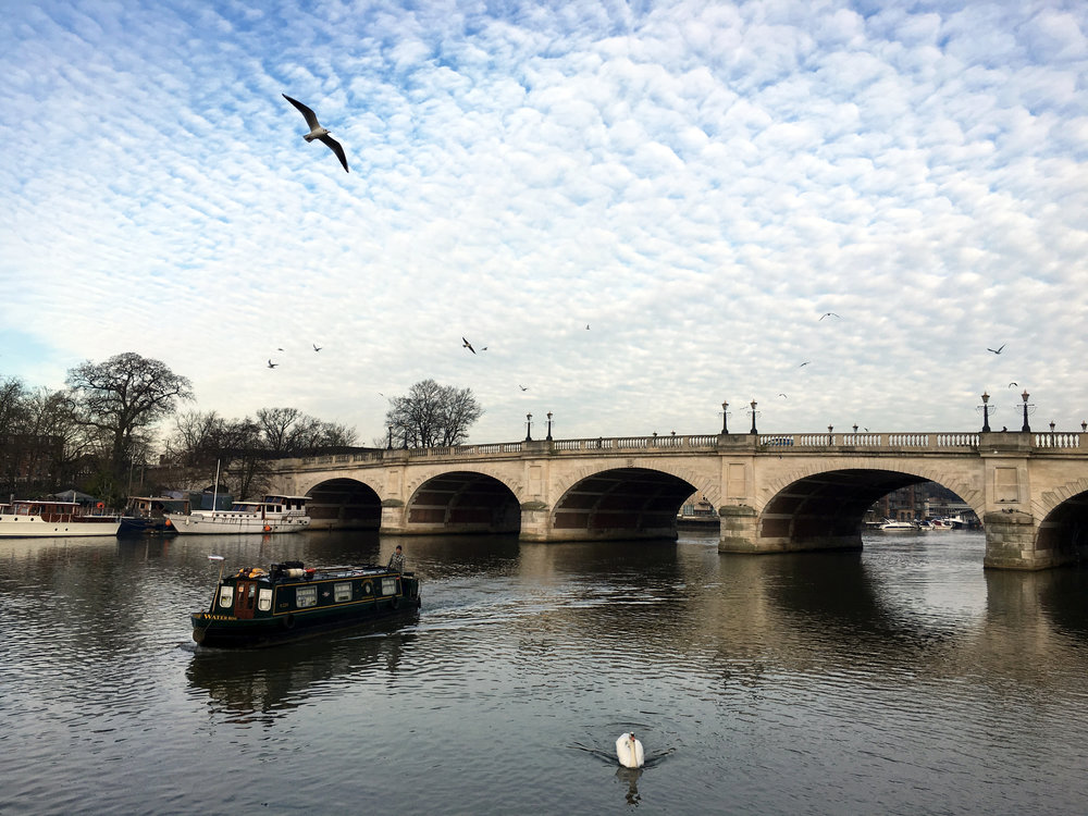 I took this photo of Kingston Bridge and the River Thames the day after my MA graduation in January 2016. Just look at that magnificent sky, and the birds and the boats and the swan! I miss this view A LOT.