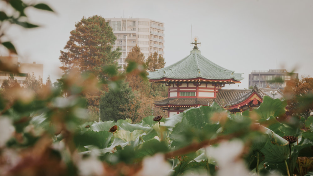 what-to-do-in-ueno-park (2).jpeg
