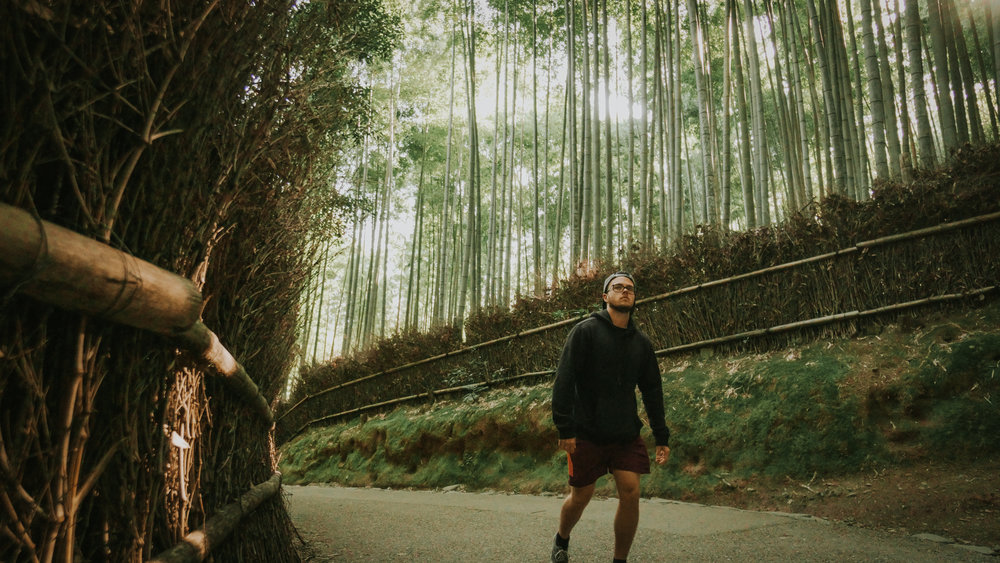 polywander-what-to-must-see-in-kyoto-bamboo-forest