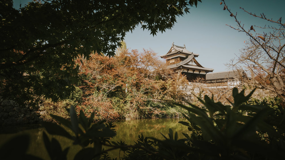 polywander-what-to-do-in-nara-japan-on-a-budget (13).jpeg