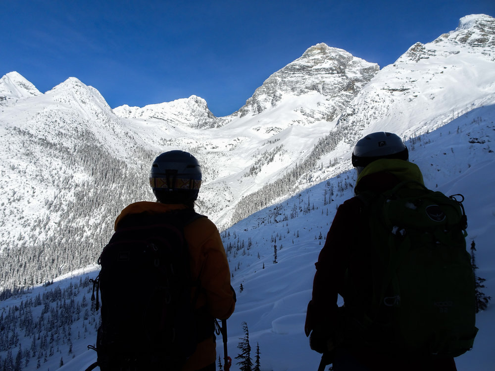 Scoping a land of endless ski lines-- photo courtesy of Beau Kiklis