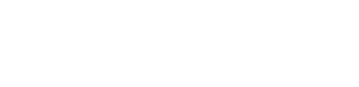 William David Homes
