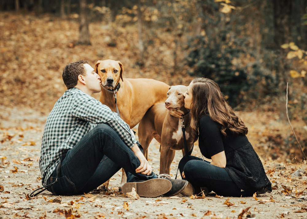 PETS  {AND THEIR PEOPLE} - SESSION FEE $350 1 hr and 25 + hand edited images from a beautiful, password protected online gallery.Post-session ordering consultationFamilies larger than 6 or with more than 2 pets are an additional $50. Contact regarding travel fees.