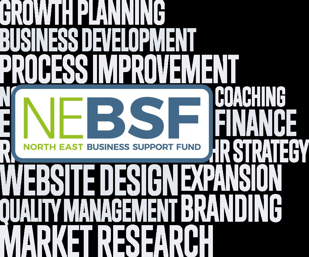 NEBSF Logo Artwork.png