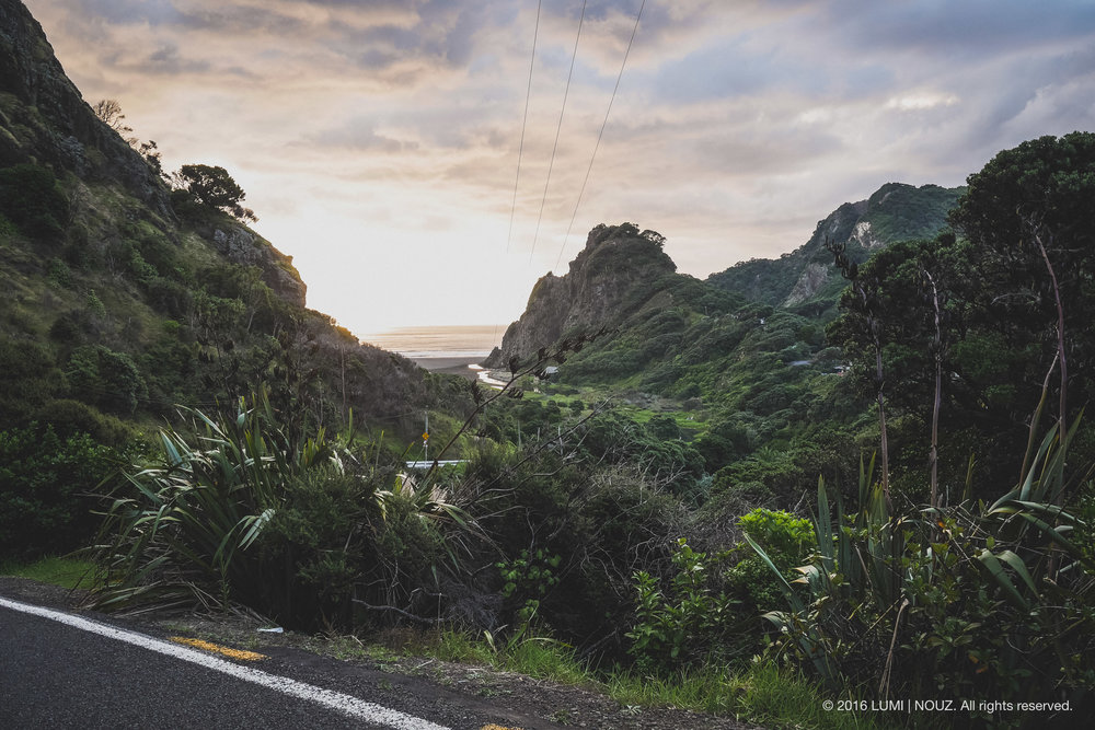Karekare Beach, view from Lone Kauri Rd., North Island, New Zealand