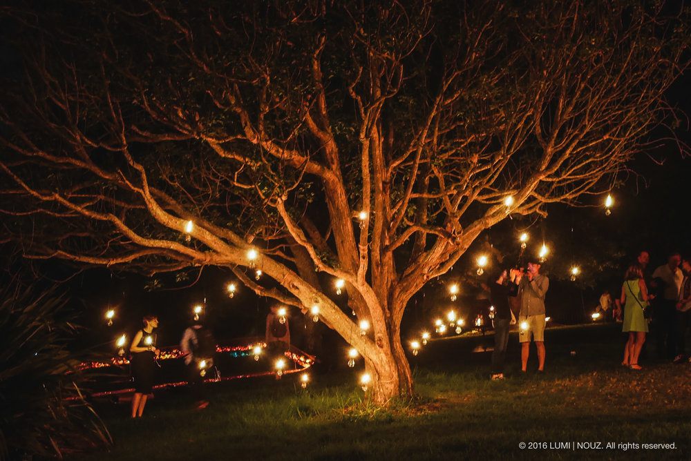 Carabosse Fire Garden, Auckland, North Island, New Zealand