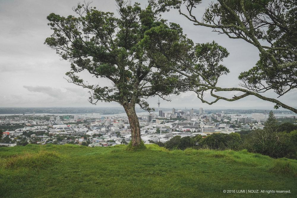 Mount Eden in Auckland, North Island, New Zealand