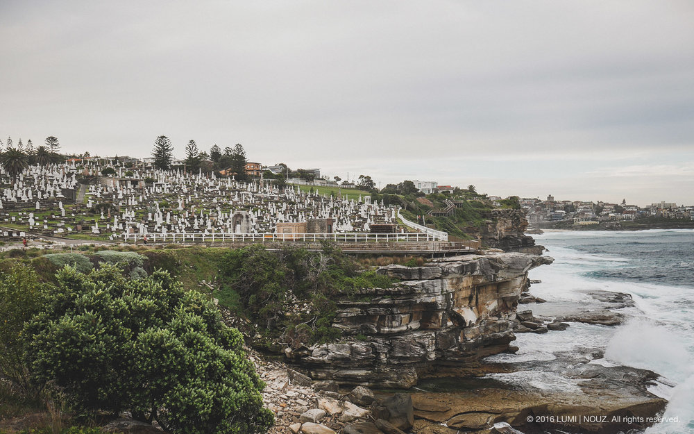 Waverley Cemetery, Bondi Beach Coast Walk, Sydney, Australia