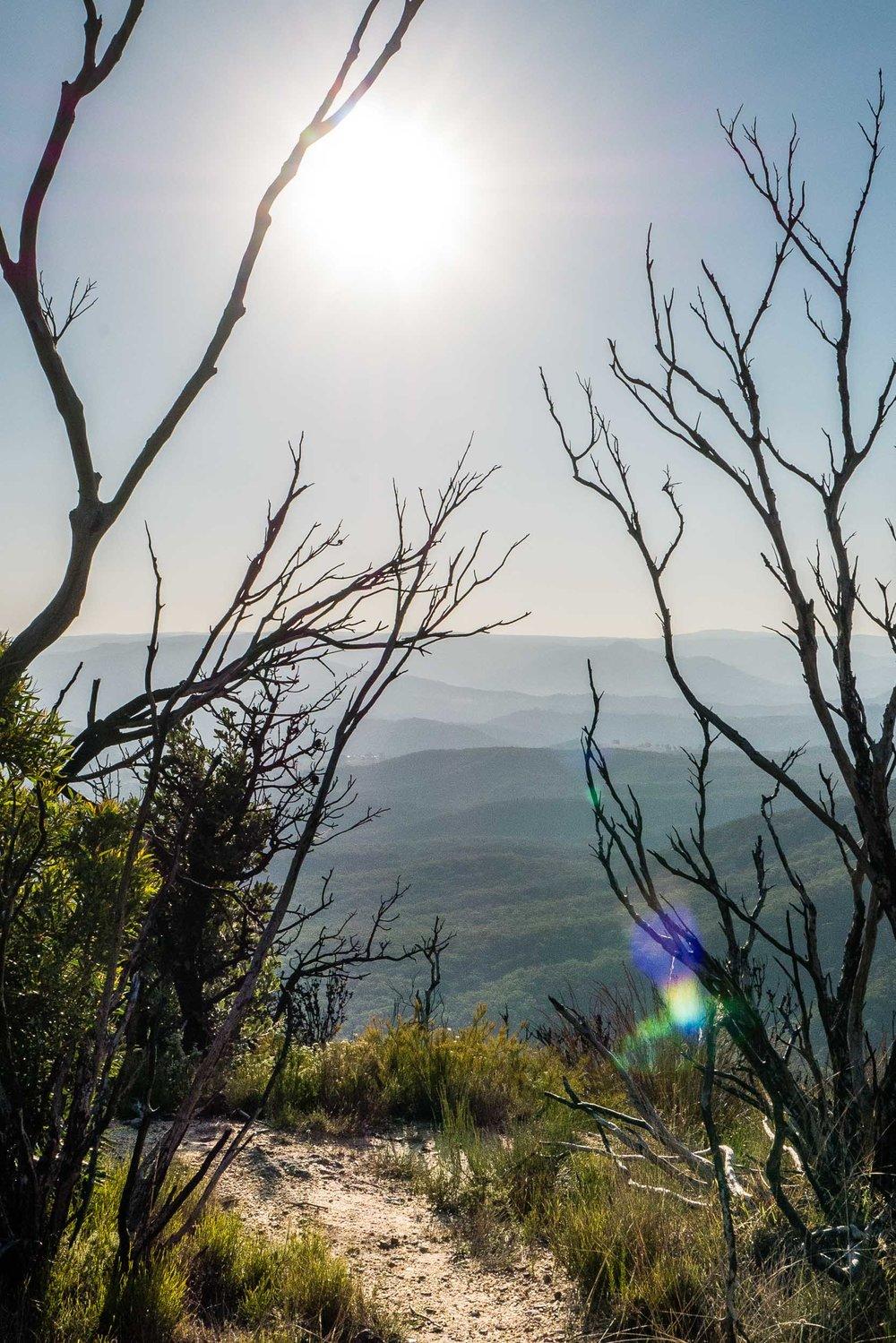 Blue Mountains-4.jpg