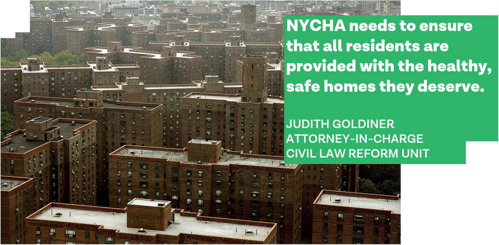 NYCHA - Judith Goldiner.png