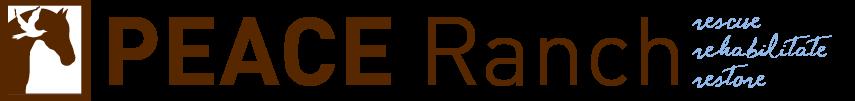 cropped-cropped-pr_web_logo.png