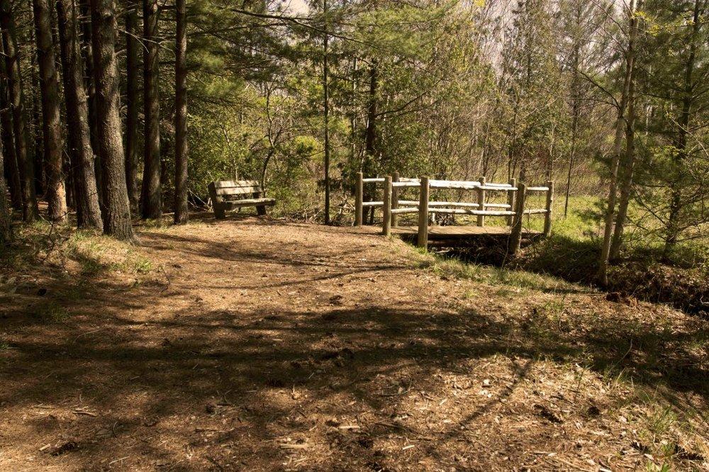 miller-creek-bench-bridge-pklnds-1024x682.jpg