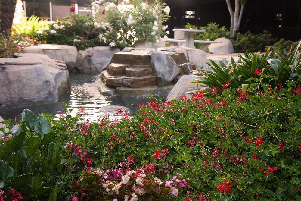 Flowers & Fountain.jpg