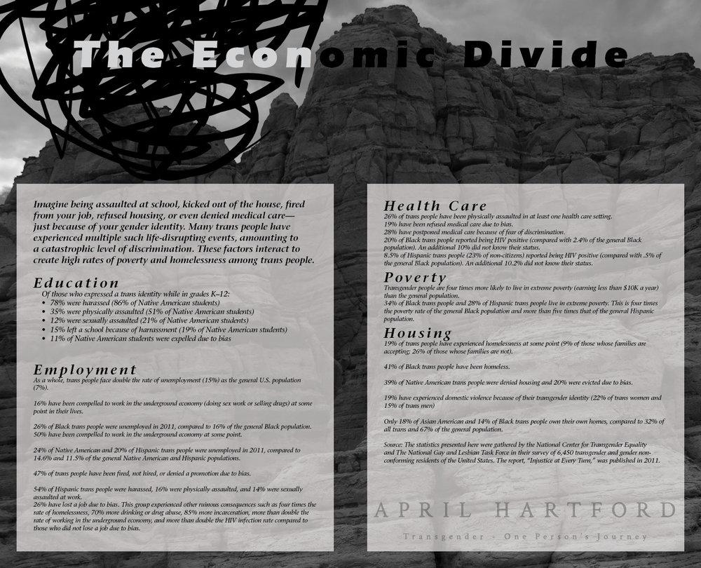 The Economic Divide