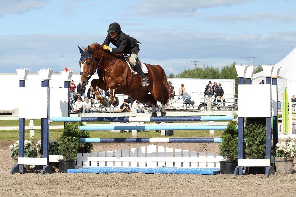 Paul O'Neill   Entraîneur Niveau II Canada Hippique, spécialisé en saut d'obstacle.  S'occupe de l'élevage avec sa fille et de la vente de chevaux.  Plus de 45 années d'expérience.