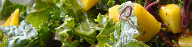 winter_salad_header